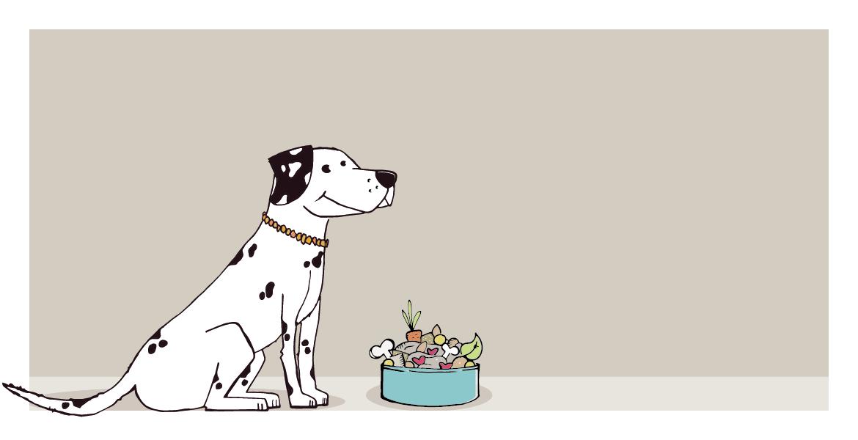Bio Hundekekse handgemacht