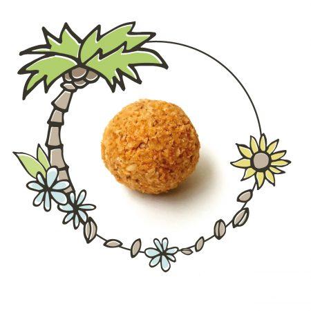 Kokos-Bällchen